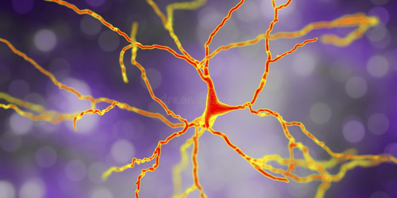Neurone dopaminergique, reconstruction d'ordinateur illustration libre de droits