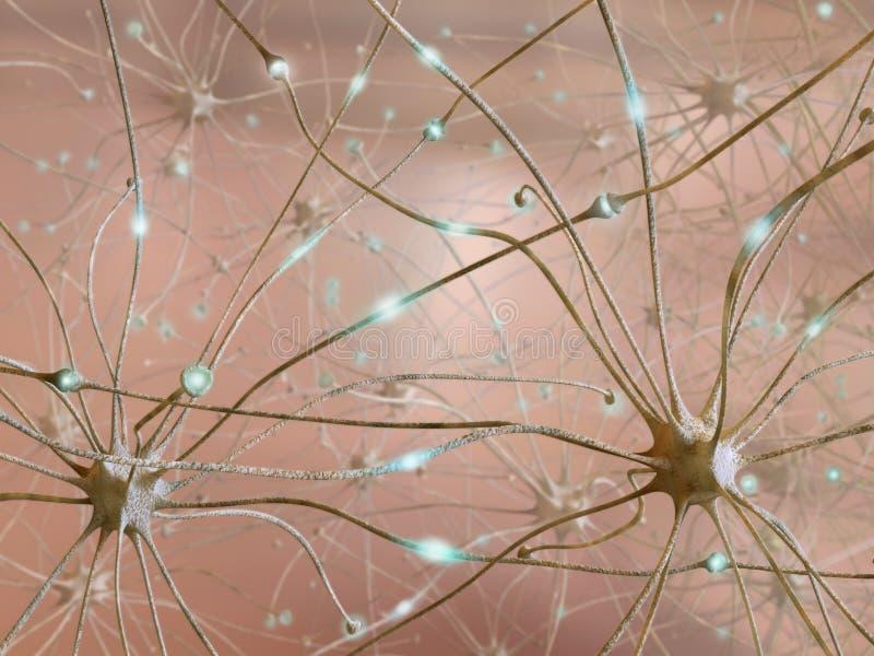 Neuronen stock abbildung