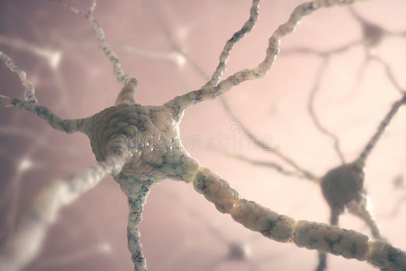 Neuronen royalty-vrije stock foto