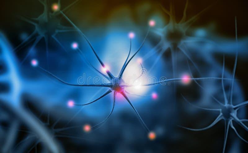 Neuronencellen vector illustratie