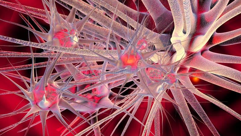 Neuronennetwerk royalty-vrije stock afbeeldingen