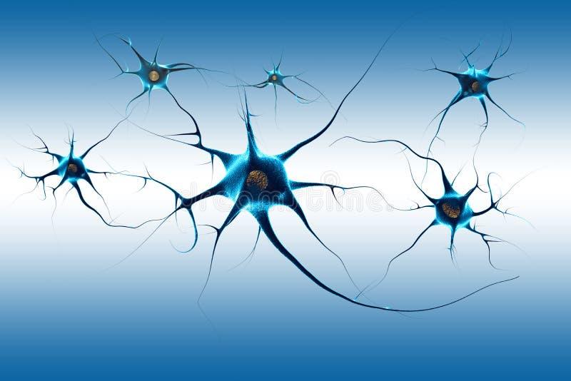 Neurones illustration stock