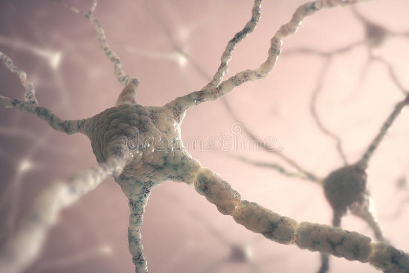 Neurones photo libre de droits