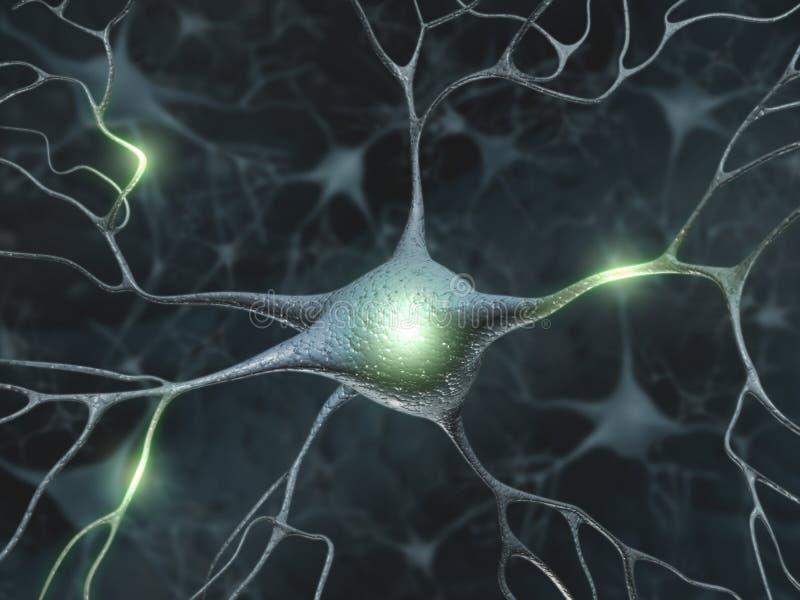 Neuroni illustrazione vettoriale