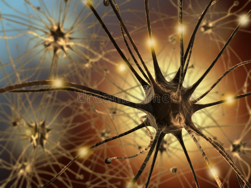 Neurons vector illustration