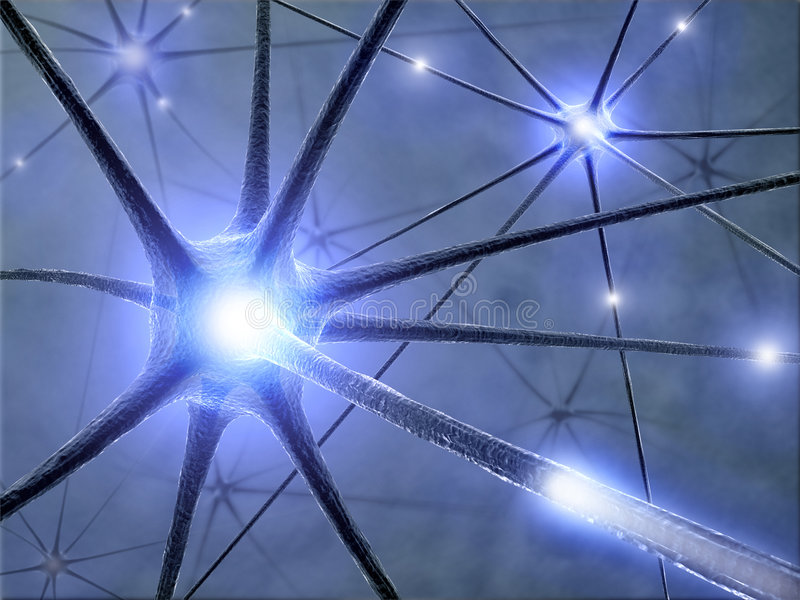 Neurons. Some hardwired neurons, transferring pulses and generating information