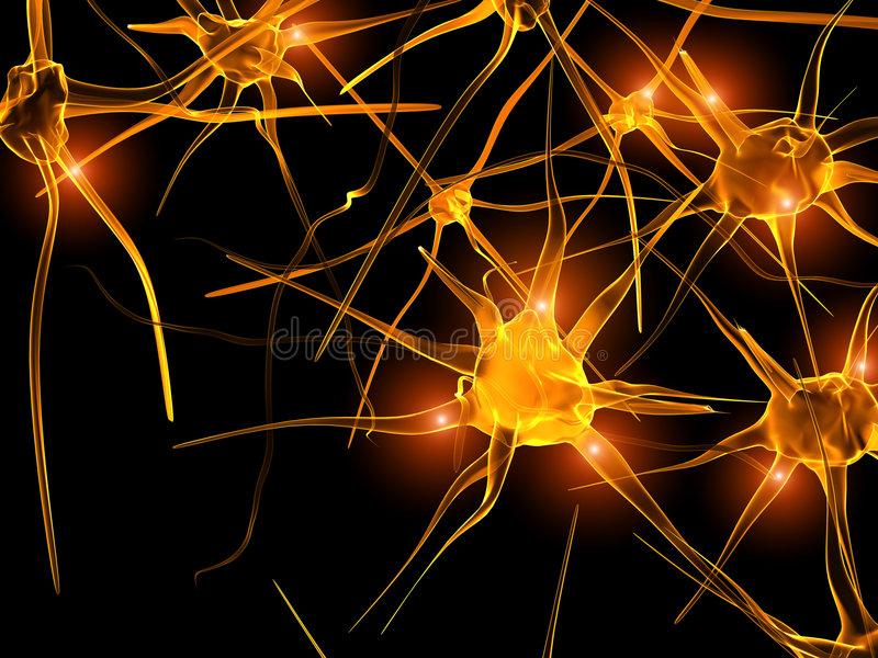 Neurons. High resolution image of axon of nerve cell (neurons