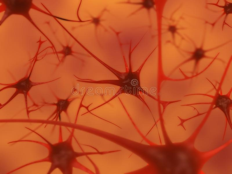 Neurons in the brain royalty free stock images