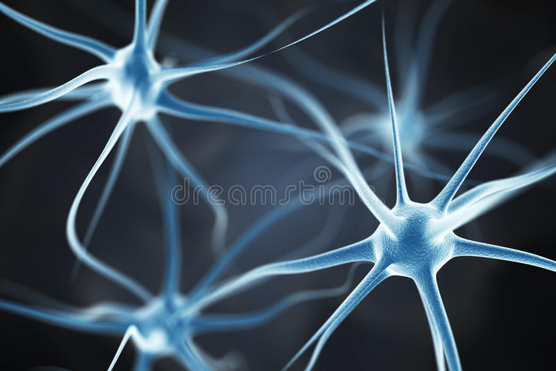 Neurons in the brain stock illustration
