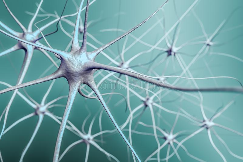 Neurons in brain, 3D illustration of neural network royalty free illustration
