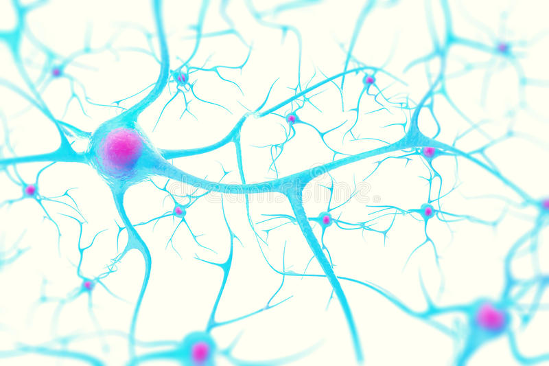 Neurons in the brain on white background with focus effect. 3d illustration royalty free stock photography