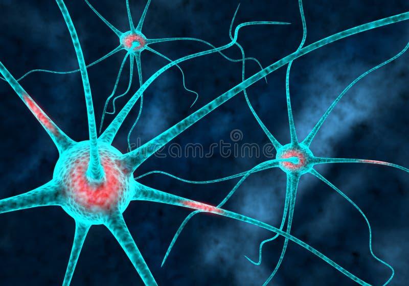 Neurons stock illustration