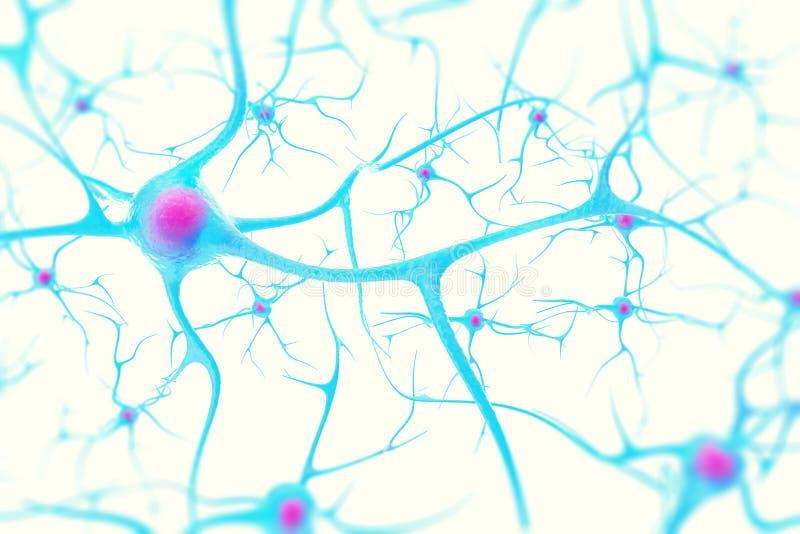 Neurons i hjärnan på vit bakgrund med fokuseffekt illustration 3d royaltyfri fotografi
