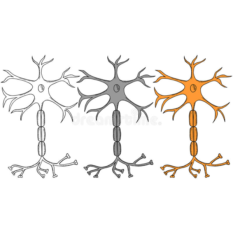Neuronskizze in der Farbe, Satz stock abbildung