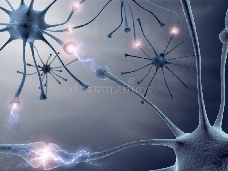 neurony ilustracji