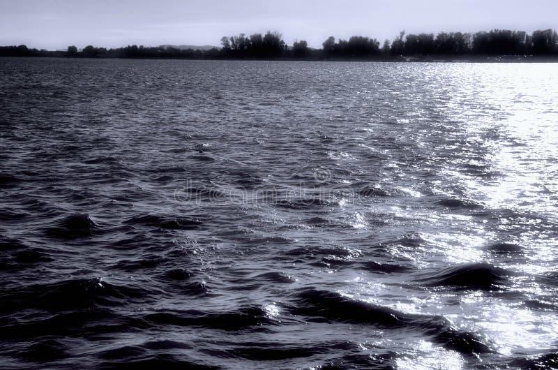 Neurotisk flod royaltyfri fotografi