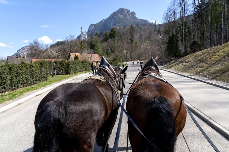 Neuschwanstein slott i Bayern, Tyskland - April 3, 2019: Berömd slott Neuschwanstein nära Alpsee och Nohenschwangau i bayerskt royaltyfri fotografi