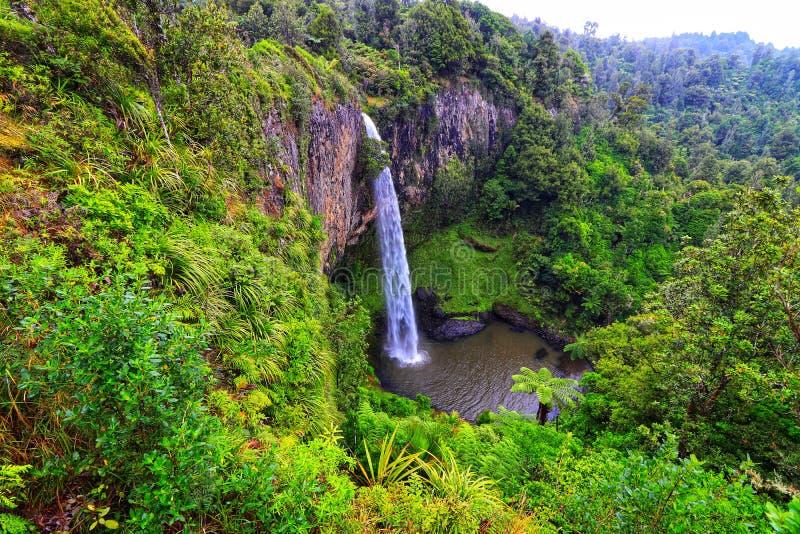 Neuseeland-Brautschleier-Fälle - Natur-Park stockfotografie