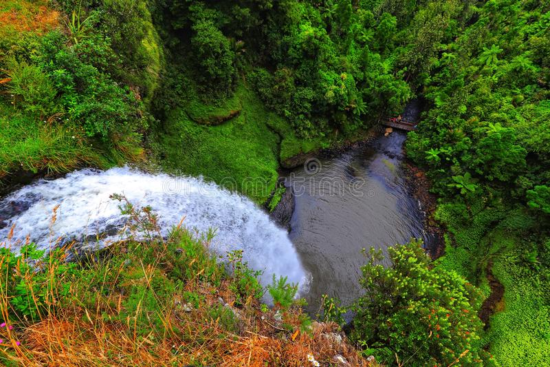 Neuseeland-Brautschleier-Fälle - Natur-Park lizenzfreies stockbild