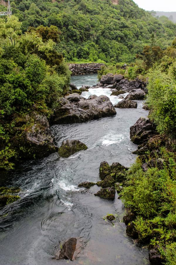 Neuseeland im Sommer lizenzfreie stockfotos