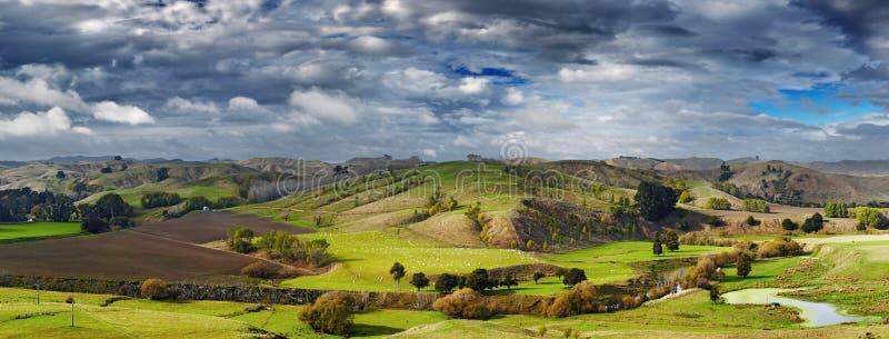 Neuseeland-Landschaft, Nordinsel lizenzfreie stockbilder