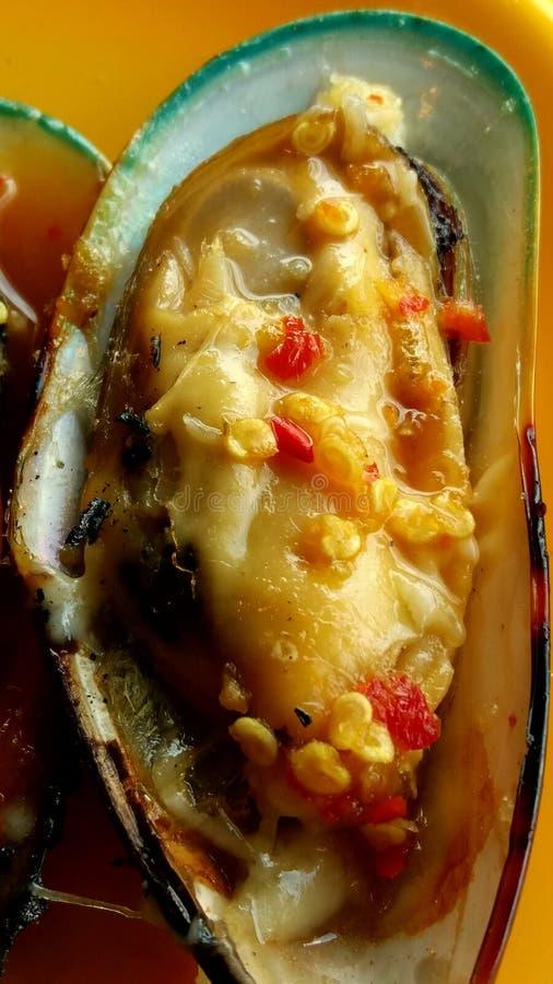 Neuseeland-Miesmuschelmiesmuschel geschnitten mit srafood Soße lizenzfreie stockfotos