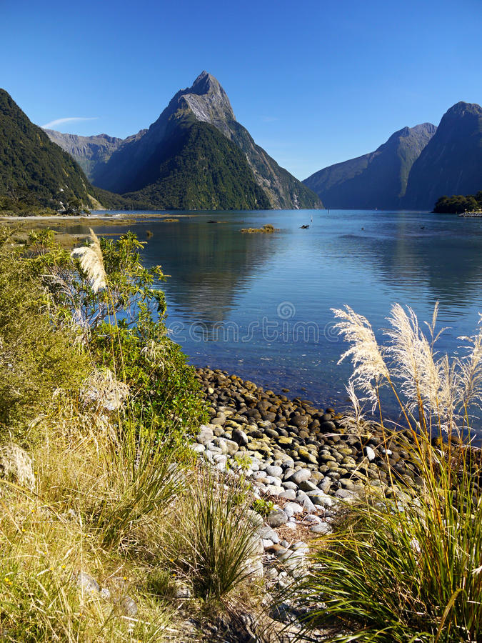 Neuseeland, Milford Sound lizenzfreie stockbilder