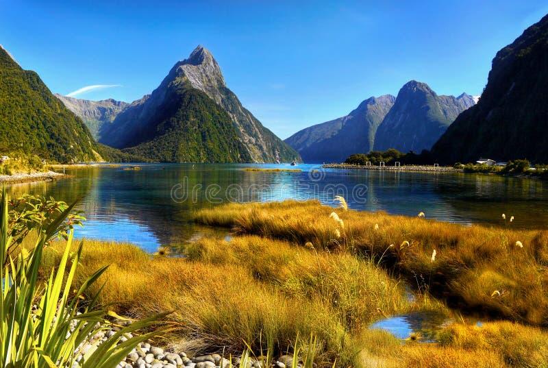 Neuseeland, Milford Sound, szenische Gebirgslandschaft stockbilder