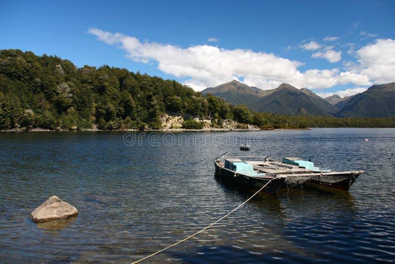 Neuseeland-Natur lizenzfreies stockfoto