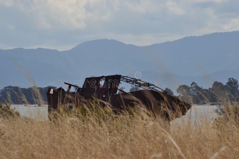 Neuseeland-Schiffbruch versteckt im Sumpf stockfotografie