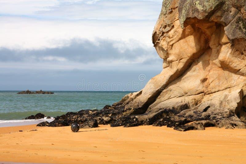 Neuseeland-Strand lizenzfreie stockfotografie