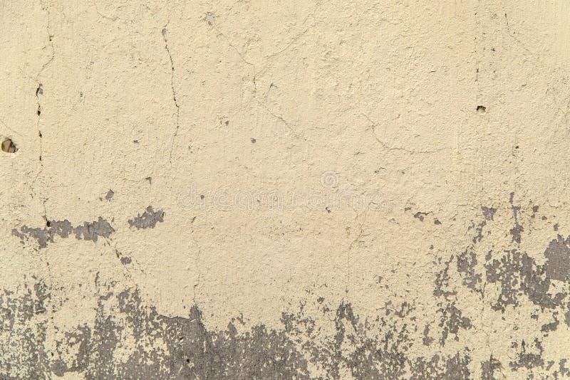 Neutral färg texturerad betongvägg arkivfoto