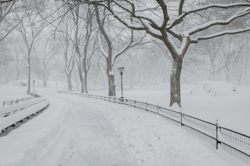 Neva no Central Park - atmosfera calma do inverno - New York foto de stock royalty free