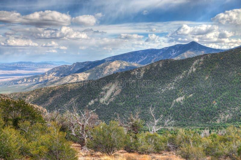 Nevada-Great Basin National Park-Wheeler Peak Trail stock photos