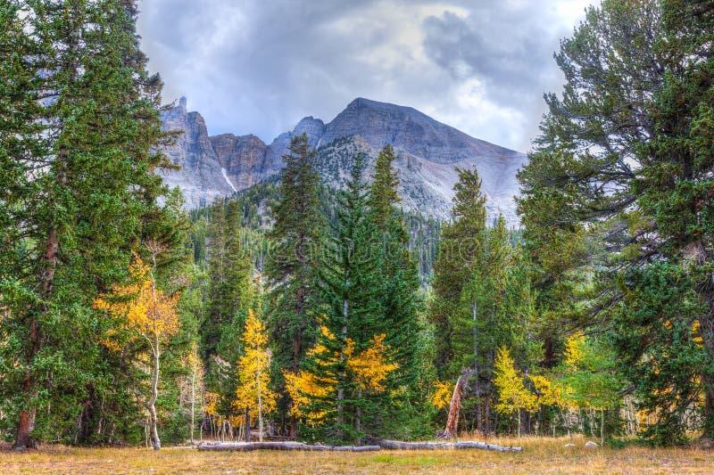 Nevada-Great Basin National Park-Wheeler Peak Trail royalty free stock photography