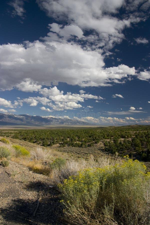 Nevada Landscape royalty free stock photo