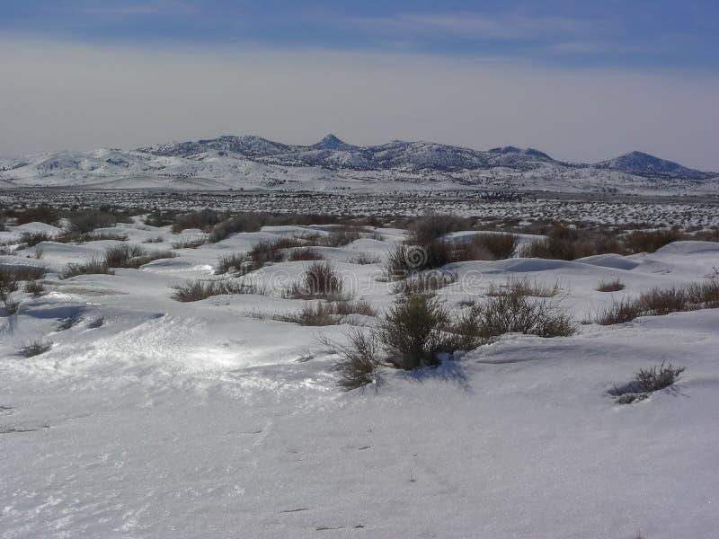 Nevada Mountain Range Snow arkivbild
