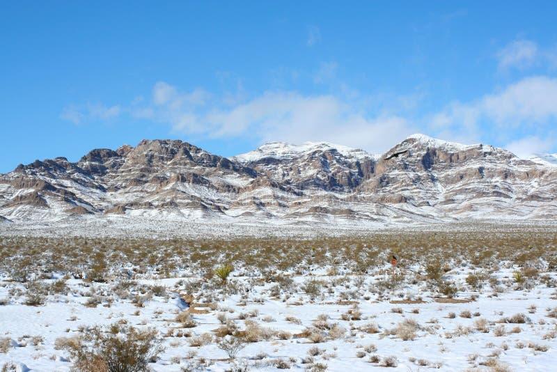 Nevada Mountains Along Highway 15 royaltyfri bild
