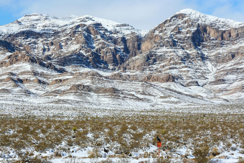 Nevada Mountains Highway 15 royaltyfri foto