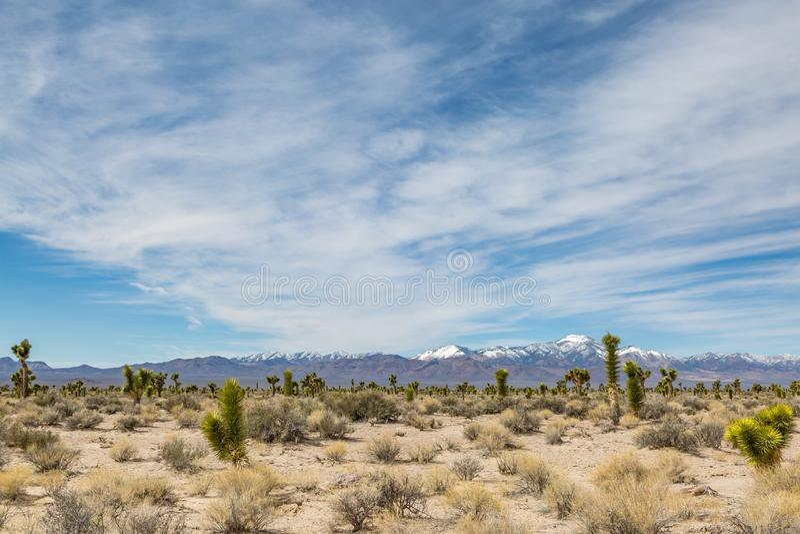 Nevada pustyni widok zdjęcie royalty free