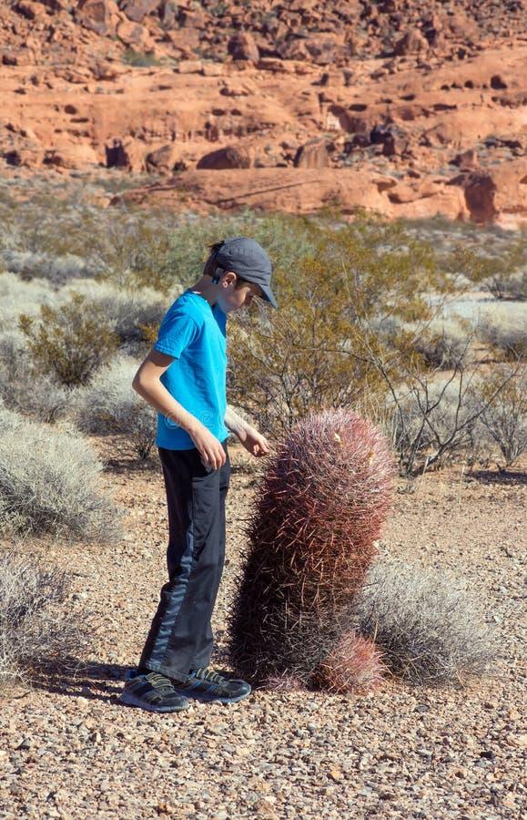 Nevada stanu park: Dolina ogień Chłopiec stojaki blisko ampuła baru fotografia stock
