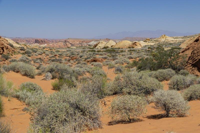 Nevada, Vallei van het Parkpanorama van de Brandstaat stock afbeeldingen