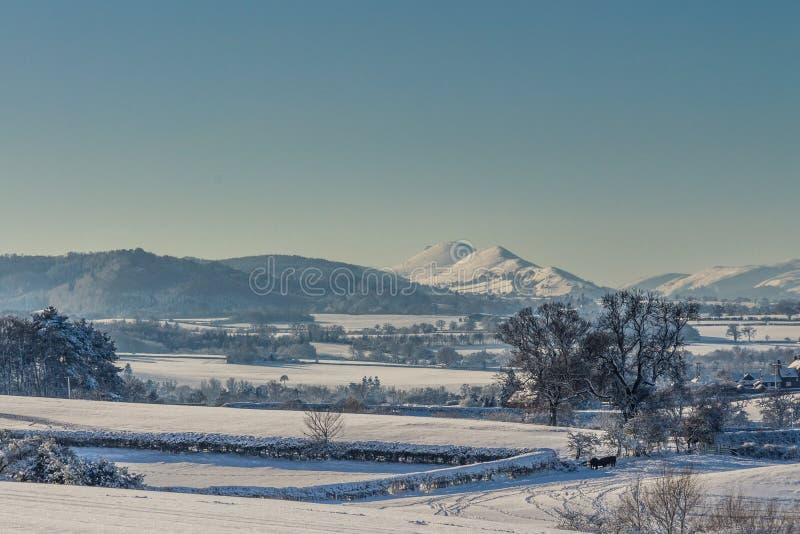Nevado Shropshire foto de archivo