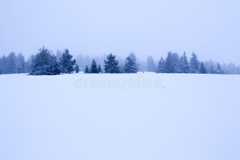 Nevado y fondo de niebla del paisaje del invierno de la montaña fotos de archivo
