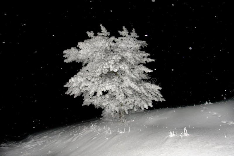 Download Neve imagem de stock. Imagem de paisagem, petri, rocha - 12802375