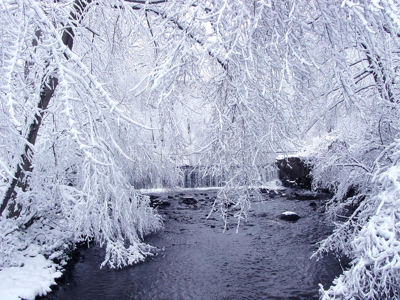 Neve immagini stock libere da diritti