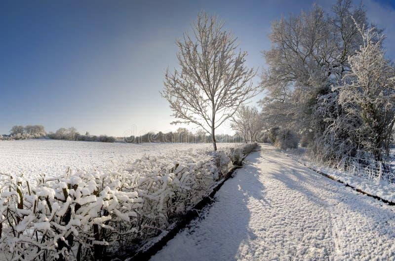 Neve fotos de stock