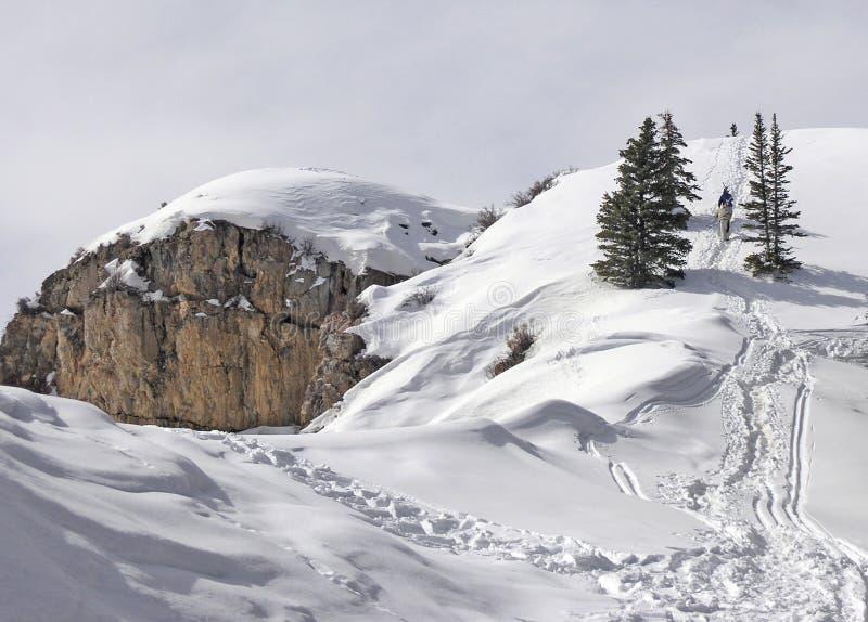 Download Neve imagem de stock. Imagem de skiing, montanha, aspen - 543861