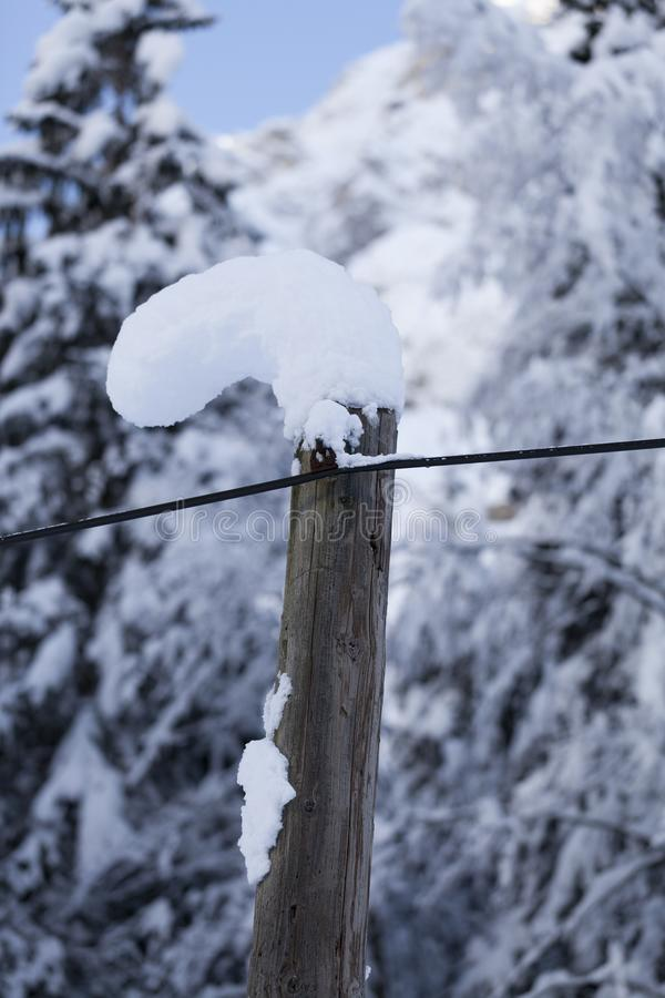 A neve alta cedeu, curvado no polo de madeira imagens de stock