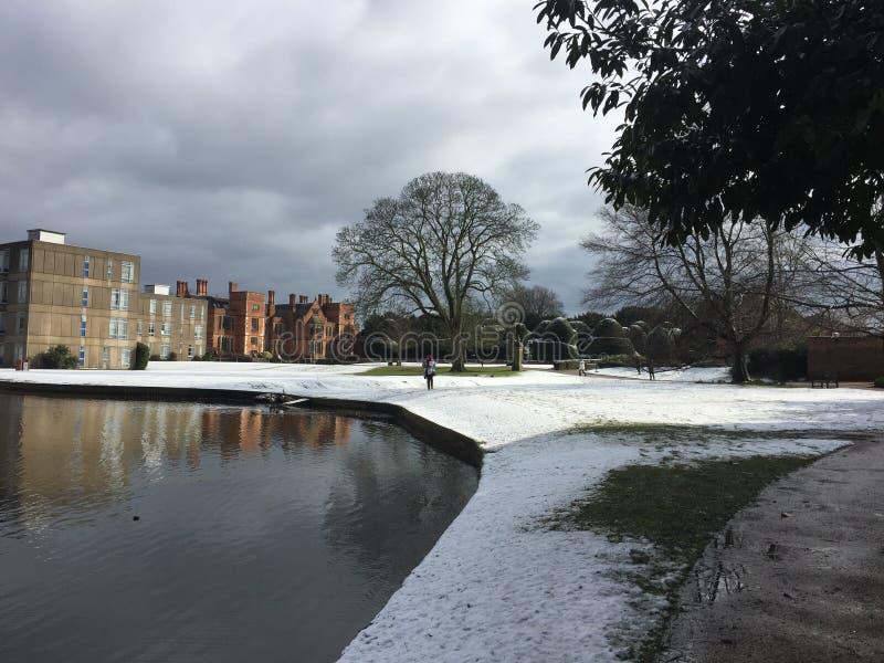 Neve ao princípio de março de 2016 foto de stock
